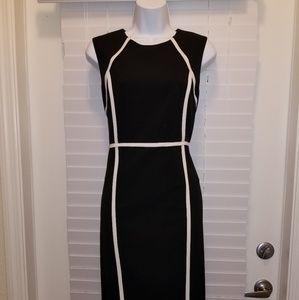 Calvin Klein Womens Sheath Dress Size 12P Black